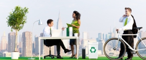 The Truth About Green Offices